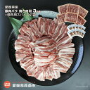【ふるさと納税】<愛媛県産 豚肉バラ 焼き肉用 特盛3kg ...
