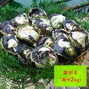 【ふるさと納税】岩がき(殻付2kg) 【魚貝類・生牡蠣・かき...