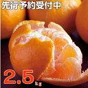 【ふるさと納税】RK−19【訳あり】ポンカン2.5kg...