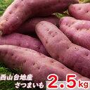 【ふるさと納税】RK006掘りたてさつまいも(西山きんとき芋)2.5kg<野菜 お菓子 スイーツ ケ...
