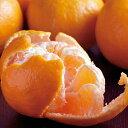【ふるさと納税】RK059【訳あり】人気の柑橘室戸産ポンカン3kg