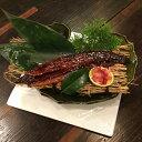 ショッピングうなぎ 【ふるさと納税】SZ019室戸の炙り鯖寿司とうなぎの蒲焼きセット
