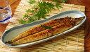【ふるさと納税】うなぎ蒲焼き 国産 高知県産 初音 魚 魚介類 送料無料 <HN091>