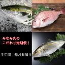 【ふるさと納税】定期便 みなみ丸のこだわり魚介セット!半年間...