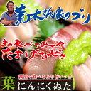 【ふるさと納税】脂の乗った旨いブリを高知の食べ方、葉ニンニク...