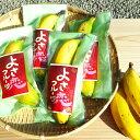 【ふるさと納税】高知初!! 純国産 有機栽培 皮ごと食べられ...