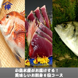 【<strong>ふるさと納税</strong>】<strong>定期便</strong> 魚介類 刺身 「半年間6回 小嶋水産 お刺身6回コース」産地直送 鰤(ブリ) 鰹(カツオ) 藁焼きたたき 鯛(タイ) 鯵(アジ) フィーレ ブランド 送料無料