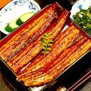 【ふるさと納税】圧倒的ボリューム!肉厚ふっくら美味しいうなぎ蒲焼き 7尾セット