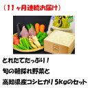 【ふるさと納税】(11ヶ月連続お届け)とれたてたっぷり!旬の朝採れ野菜と高知県産コシヒカリ5kgのセット
