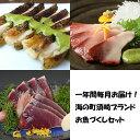 【ふるさと納税】一年間毎月お届け!海の町須崎ブランドお魚づく...