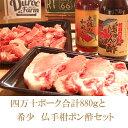 【ふるさと納税】ブランド豚ステーキどーんと880gと絶品調味料のお得セット