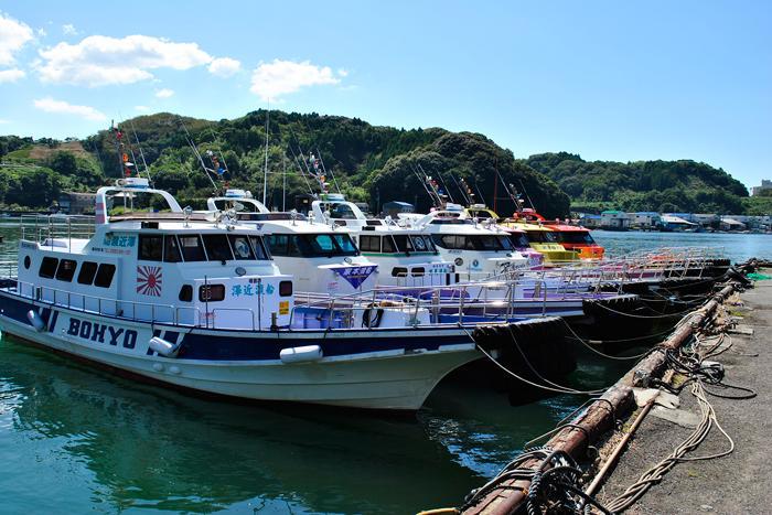 【ふるさと納税】[C-013027]沖の島・鵜来島磯釣り券