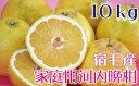 【ふるさと納税】[030012]河内晩柑10kg【家庭用】