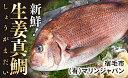 【ふるさと納税】[009004]土佐宿毛の真鯛 贅沢加工