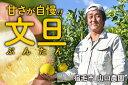 【ふるさと納税】甘さが自慢!山口農園の完熟文旦(家庭用10k...