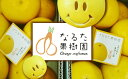 【ふるさと納税】成田果樹園の文旦【家庭用】大玉10kg...