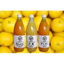 【ふるさと納税】【P-1】オレンジ園の自家製かんきつ果汁飲料3本セット(希釈用)
