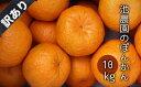 【ふるさと納税】訳あり柑橘「ポンカン」10kg(池農園)【E-17】