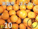 【ふるさと納税】訳あり柑橘「ポンカン」10kg(谷川果樹園)【E-18】
