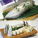 【ふるさと納税】割烹吉野 鯖・カマスの姿寿司