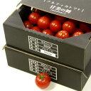 【ふるさと納税】高糖度&高機能性 フルーツトマト2kg 完熟 糖度8以上送料無料 数量限定 のし 包装 贈り物 対応可おやつ おかず つまみ食い 季節限定 配送日付指定不可 C-197