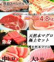 【ふるさと納税】kan038 お得!肉&トロ♪高知県産豚肉ス...