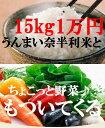 【ふるさと納税】N918 町制100周年記念!うんまい奈半利米15kg・ちょこっと新鮮野菜セット♪