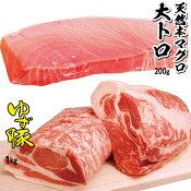 【ふるさと納税】kan167 贅沢な組み合わせ!トロ豚セット(天然本マグロの大トロ200g・もっちり食感♪奈半利ゆず豚1kg) 寄付額13,000円