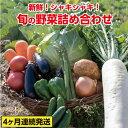 【ふるさと納税】31ve002 旬の野菜詰め合わせコース(4...