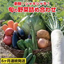 【ふるさと納税】31ve500c 旬の野菜詰め合わせコース(6ヶ月連続発送!!)