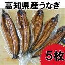 【ふるさと納税】高知県産うなぎの蒲焼き5枚 特製かば焼きのタレ 山椒 付き
