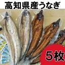 【ふるさと納税】高知県産うなぎの蒲焼き3枚 白焼き2枚 特製...
