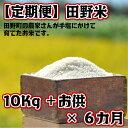 【ふるさと納税】定期便 平成30年産 田野米10Kg+ご飯の...