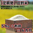 【ふるさと納税】定期便 平成30年産 田野米5Kg+ご飯のお...
