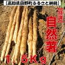【ふるさと納税】田野産特選「自然薯(じねんじょ)」1.5Kg 全然粘りが違います汁物にしても溶けない