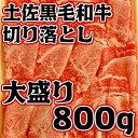 【ふるさと納税】土佐黒毛和牛切り落とし800g