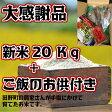 【ふるさと納税】大感謝品 平成28年産田野米 20Kg+ご飯のお供(干物や万能しょうが等)