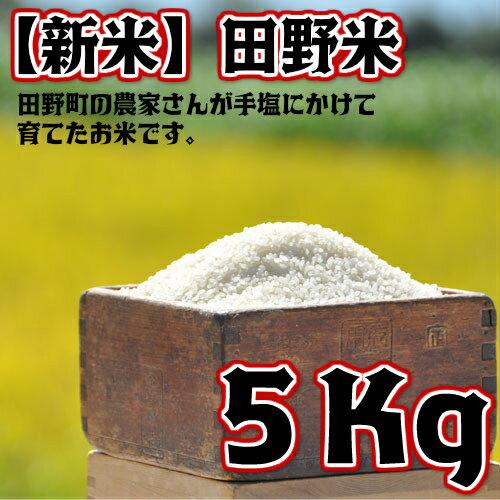 【ふるさと納税】平成30年産 田野米 5Kg 高知県田野町の農家さんが手塩にかけて育てた新米です。