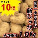 【ふるさと納税】四国一小さな町のじゃがいも。高知県田野町の大野台地で採れた新じゃが 10Kg