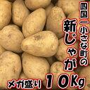 【ふるさと納税】四国一小さな町のじゃがいも。高知県田野町の大野台地で採れた新じゃが 10Kg...
