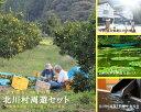 【ふるさと納税】ゆずの郷北川村周遊セット/北川村モネの庭年間パスポート付