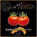 【ふるさと納税】高知産フルーツトマト「メルベーユ」 約1.5kg 糖度9度以上!【s-kensyo】