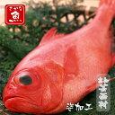 【ふるさと納税】キンメダイ姿加工(1キロ前後)サイズお刺身 ...
