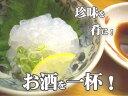 【ふるさと納税】のれそれ(100g×5P)タレ付アナゴ稚魚 土佐 珍味 高知【koyofr】...