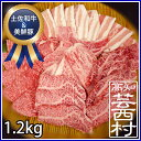 【ふるさと納税】南国高知の焼肉三昧セット1.2kg牛上カルビ...