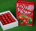 【ふるさと納税】フルーツトマト