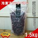 【ふるさと納税】<冷凍ブラックベリー1.5kg> 高知県 佐...