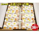 【ふるさと納税】<土佐ジローの卵 6個パック×6(36個)>高知県 佐川町 もちおのしっぽ【冷蔵】