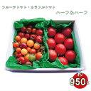【ふるさと納税】<カラフルトマトとフルーツトマトのハーフ&ハ...
