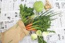 【ふるさと納税】越知町産季節の野菜セット(年4回発送)